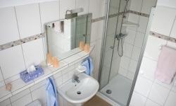 Zimmerbilder-2011-002